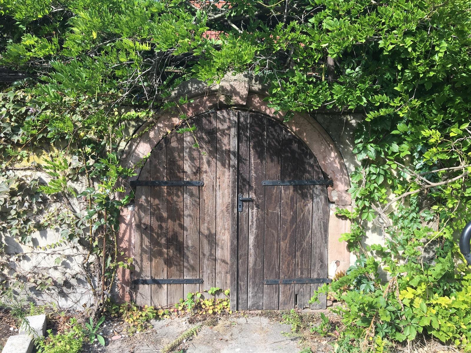 Kellereingang im Dornröschenschlaf